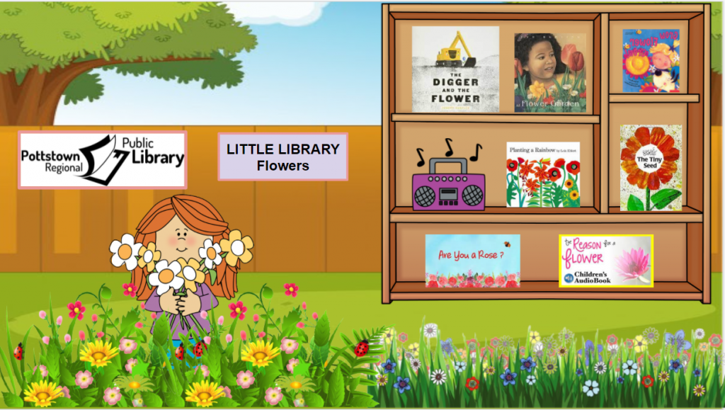 Little library about Flowers, link takes you to Google Slides presentation.